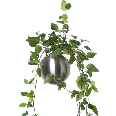 sphere.7
